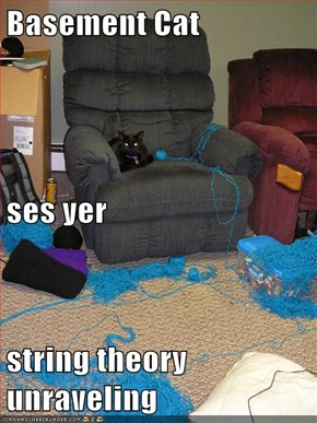 Basement Cat ses yer string theory unraveling
