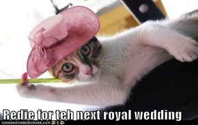Redie for teh next royal wedding