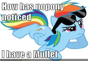 How has nopony noticed  I have a Mullet