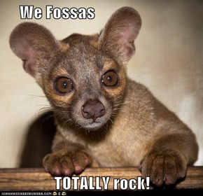 We Fossas  TOTALLY rock!