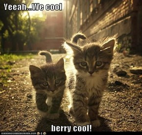 Yeeah...We cool  berry cool!