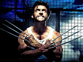Wolverine Uploader Gets Prison Sentence of the Day