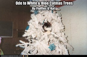 Ode to White & Bloo Catmas Trees