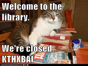 Welcome to the library.  We're closed. KTHXBAI
