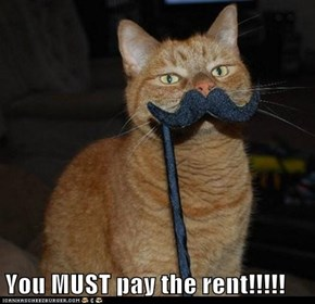 You MUST pay the rent!!!!!