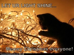 LET UR LIGHT SHINE...  Meowy Christmas everyone!