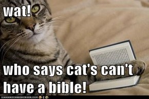 wat!  who says cat's can't have a bible!