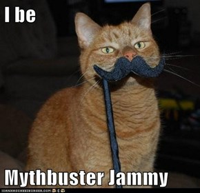 I be  Mythbuster Jammy