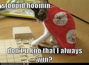 stoopid hoomin.  don't u kno that I always win?