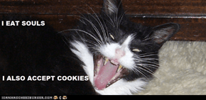 I eat soulz. But i also liek teh cookiez.