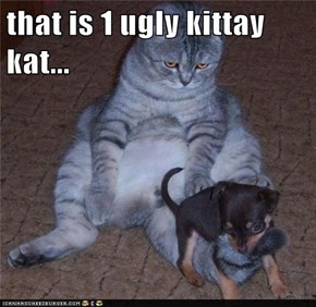 that is 1 ugly kittay kat...