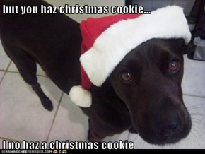 but you haz christmas cookie...  I no haz a christmas cookie