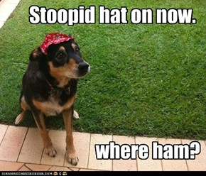 Stoopid hat on now.
