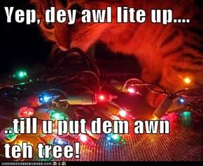 Yep, dey awl lite up....  ..till u put dem awn teh tree!