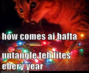how comes ai hafta untangle teh lites ebery year