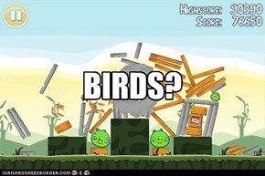 BIRDS?