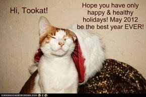 Hi, Tookat!