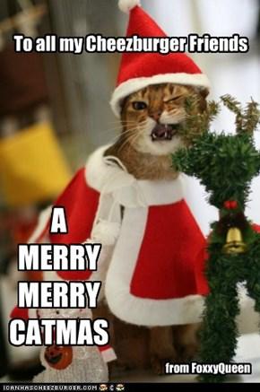 A Merry Catmas