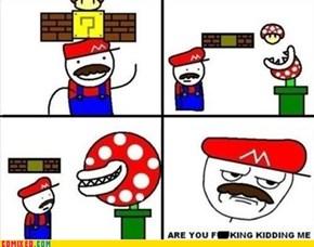 First Mushroom
