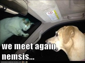 we meet again, nemsis...
