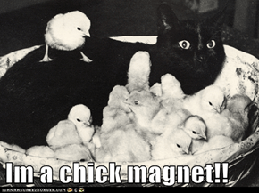 Im a chick magnet!!