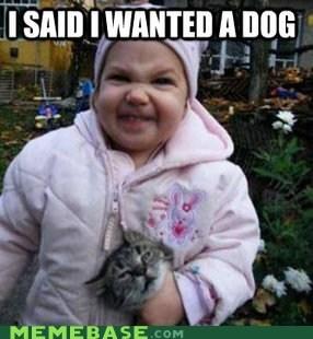 Y U NO GET ME DOG?