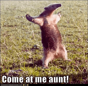 Come at me aunt!