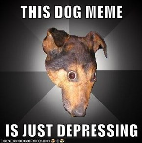 THIS DOG MEME  IS JUST DEPRESSING