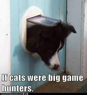 If cats were big game hunters.
