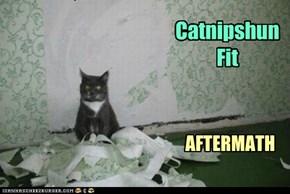 Catnip. Not even once!