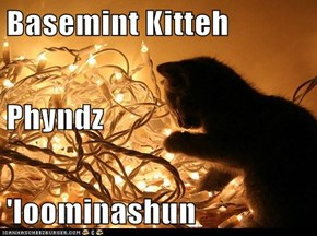 Basemint Kitteh Phyndz 'loominashun