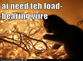 ai need teh load-bearing wire