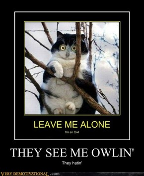 THEY SEE ME OWLIN'