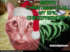MERRY CHRISTMAS TO ALL MY EPIC CHEEZFRIENDS!! :)