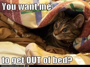 You want me  to get OUT of bed?