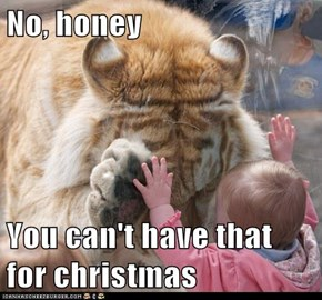No, honey  You can't have that for christmas