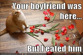 Your boyfriend was here...  But I eated him