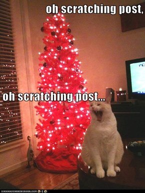 oh scratching post,  oh scratching post...
