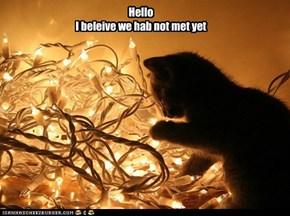 HelloI beleive we hab not met yet