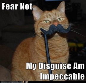 Fear Not,  My Disguise Am Impeccable