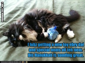 I lubz getting a new toy ebry dai and special noms all teh tiem. Dis Hanukkah is sumfing great.