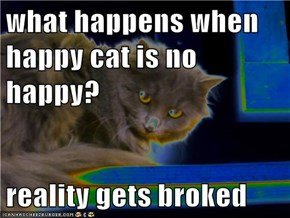 what happens when happy cat is no happy?  reality gets broked
