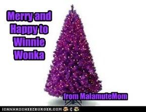 For Winnie Wonka