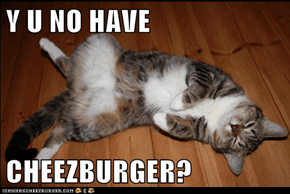 Y U NO HAVE  CHEEZBURGER?