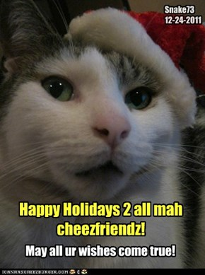 Merry Catmas 2 all cheezfriedz!