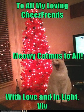 To All My Loving CheezFrends Meowy Catmus to All! With Love and In Light, Viv