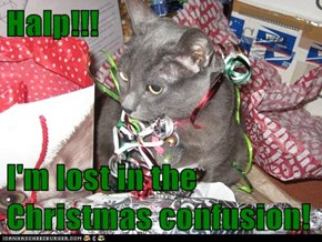 Halp!!!  I'm lost in the Christmas confusion!