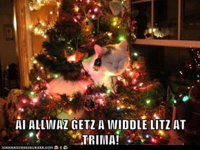 AI ALLWAZ GETZ A WIDDLE LITZ AT TRIMA!