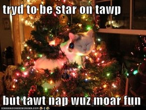 tryd to be star on tawp  but tawt nap wuz moar fun