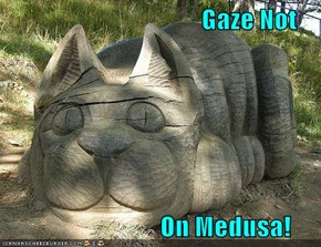 Gaze Not                                On Medusa!